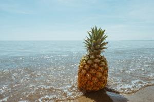 beach-1834329_1920